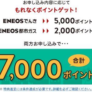 エネオスでんきに申し込みました。楽天ポイントが5000ポイント!