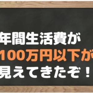 【節約の鬼】今年はついに年間生活費が100万円を切るかもしれない