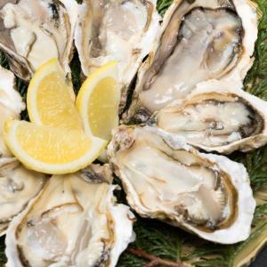 生食用真牡蠣の旬は11月~2月!お取り寄せグルメ・生食可能な通販牡蠣