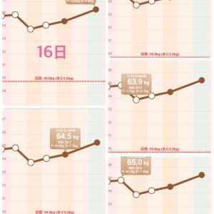 11月15日ダイエット食事・体重