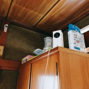 共働き親バカ夫婦、見守りカメラを導入。