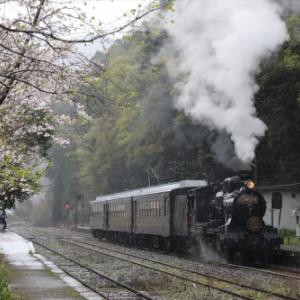 【音無支部】春雨の中を行くSL人吉号(2020.3.28)