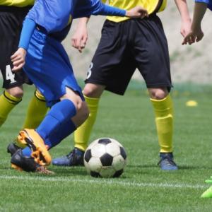 【海外サッカー】EURO優勝予想外しました。気になるFIFAランキング1位ベルギーの世代交代