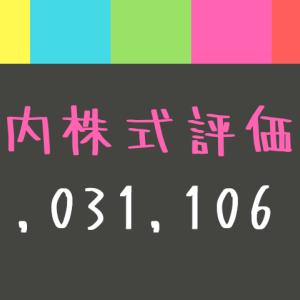 国内株式評価額-1,031,106円
