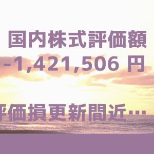 国内株式評価額-1,421,506円