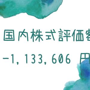 国内株式評価額-1,133,606円