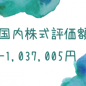 国内株式評価額-1,037,005円