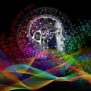【L】Brainfaceでやりたいこと