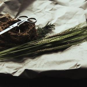 【詩】ハサミでこの手を切る勇気もない。