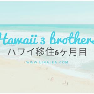 ハワイ移住6ヶ月目。ハワイの素晴らしい景色たちに、感動しなくなった日。