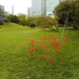 旧芝離宮庭園(2019.9.28)後編