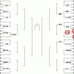 9月13日の将棋対局はNHK杯の1局のみ(2020.9.13)