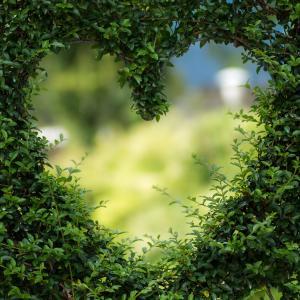 男性の一目惚れから始まる恋はうまくいく?男性が一目惚れするときの心理とは