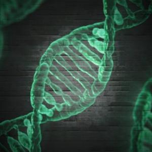 アトピーの遺伝は予防できるのか?