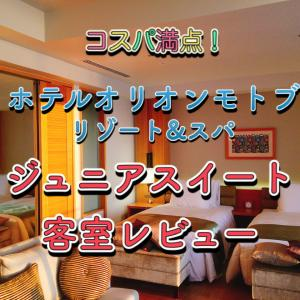 ホテルオリオンモトブ リゾート&スパ宿泊ブログ☆客室レビュー