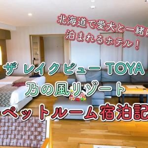 ペットと泊まれる宿☆高評価「ザ レイクビュー TOYA 乃の風リゾート」