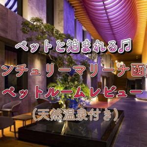 ペット同伴OK♪センチュリーマリーナ函館宿泊記☆ペットルームレビュー