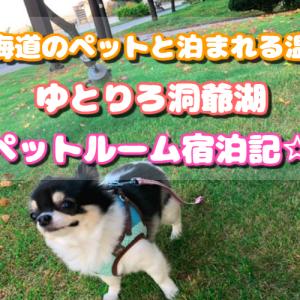 ゆとりろ洞爺湖【ペット】宿泊記ブログ