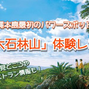 大石林山レポ☆沖縄本島北部が世界自然遺産登録へ!