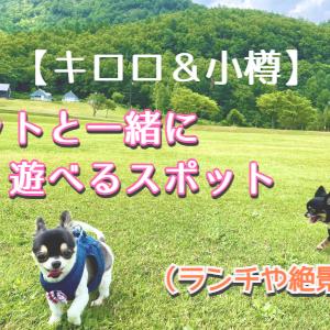【キロロ&小樽】ペットと一緒にランチや散歩が出来るスポット☆