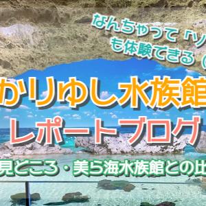 【かりゆし水族館】レポートブログ☆料金や感想、美ら海水族館と比較しての違い☆