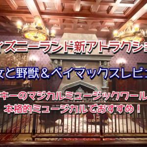 ディズニーランド☆ベイマックス&美女と野獣の感想☆マジカルミュージックワールドは特にオススメ!