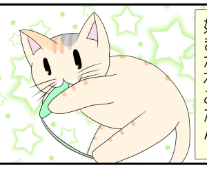 日常まんが:猫じゃらしジャンキー