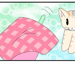 日常まんが:猫じゃらしマスターねこたん