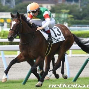 今週の重賞【ファンタジーS】今年は関東馬の出来が鍵を握るか?
