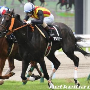 今週の重賞【福島記念】ここと京阪杯は秋の勝負レースです‼️