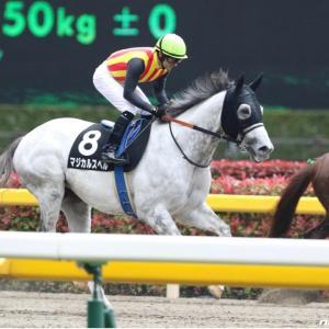 今週の重賞【武蔵野S】この人気薄馬の激走に期待