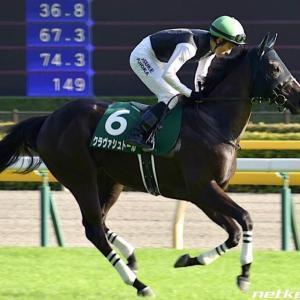 今週の重賞【阪神JF】上位馬拮抗!ここは山紫水明パワーで何とかして(>人<;)
