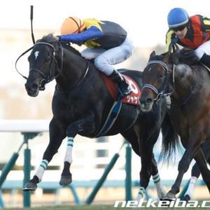 最終予想【AJCC〜シャケトラ号追悼レース〜&東海S】天国のシャケトラに捧ぐ勝利を‼️