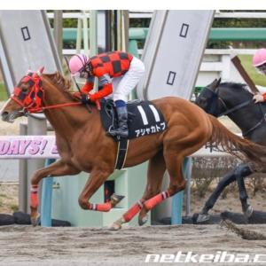 今週の重賞【マーチS】鋼鉄の狐も後押し!武藤騎手のあの馬に注目