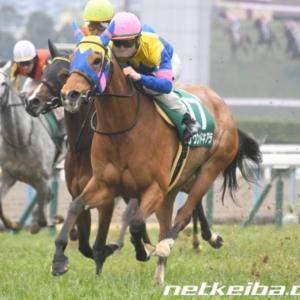 今週の重賞【阪神牝馬S】人気馬で唯一残ったこの馬に期待
