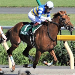 今週の重賞【マイラーズC】是非ともこのレースに使ってほしいこの馬