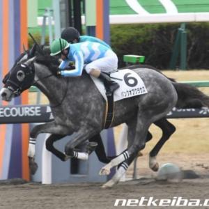 今週の注目レース【鳳雛S】ノルマンディの前祝いレースか?