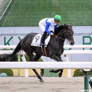 今週の注目レース【スレイプニルS】祖父が2頭とも菊花賞馬のあの馬に注目