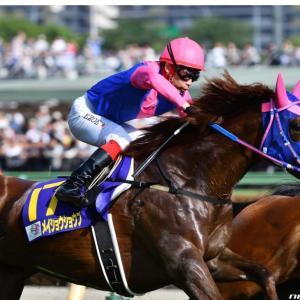 今週の重賞【函館SS】ついに1200に参戦❗️あの馬のスピードに注目