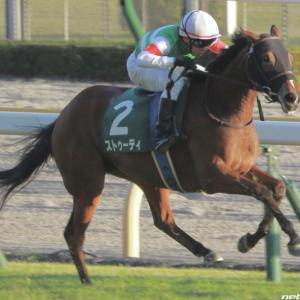 今週の重賞【チューリップ賞】チューリップ賞血統のこの馬に注目