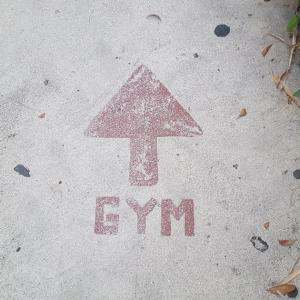 市町村立体育館のトレーニングルームに行きました💪