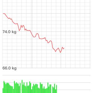 減量の結果