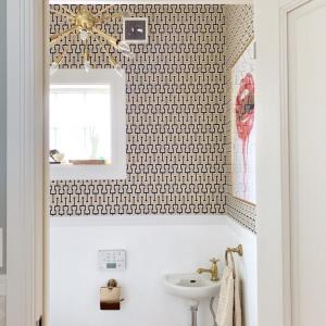 Toilet DIY