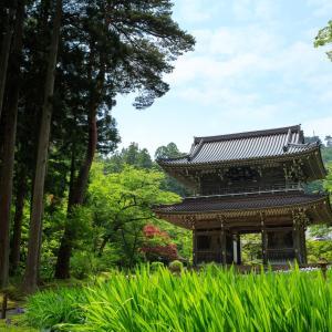 ドラクエウォーク 目的の「無銭入山」しないで 新潟・謙信ゆかりの寺が注意喚起