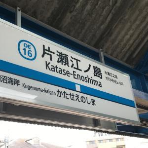 シラス丼と江の島ぶらり ~Whitebait Bowl at Enoshima
