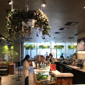 スターバックス@表参道, 東京 〜Starbucks, Omotesando, Tokyo.
