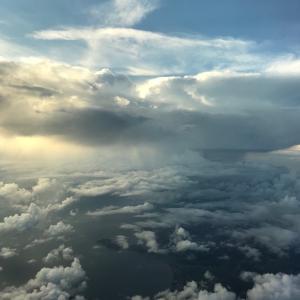 JAL 羽田着便 そして嵐JETも