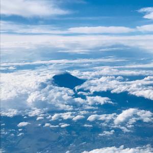 今日の富士山 と お食事