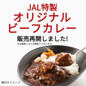 JALさんのサイトで再購入