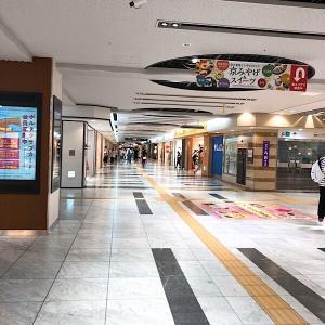 本日の京都駅付近
